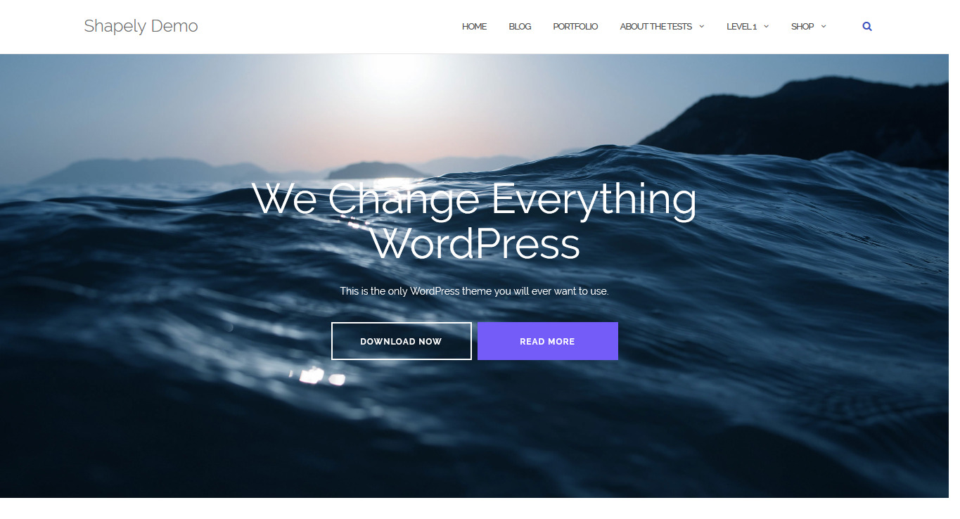 Shapely – One Page WordPress Theme