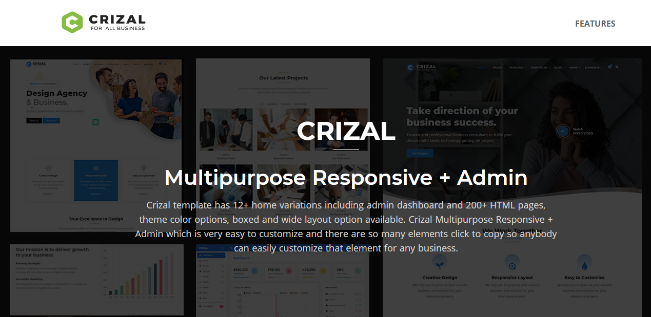 Crizal- Free Responsive Bootstrap Multipurpose Template