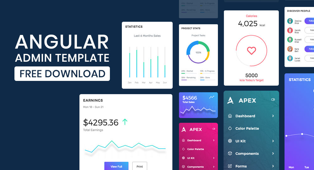 Angular Admin Template Free Download