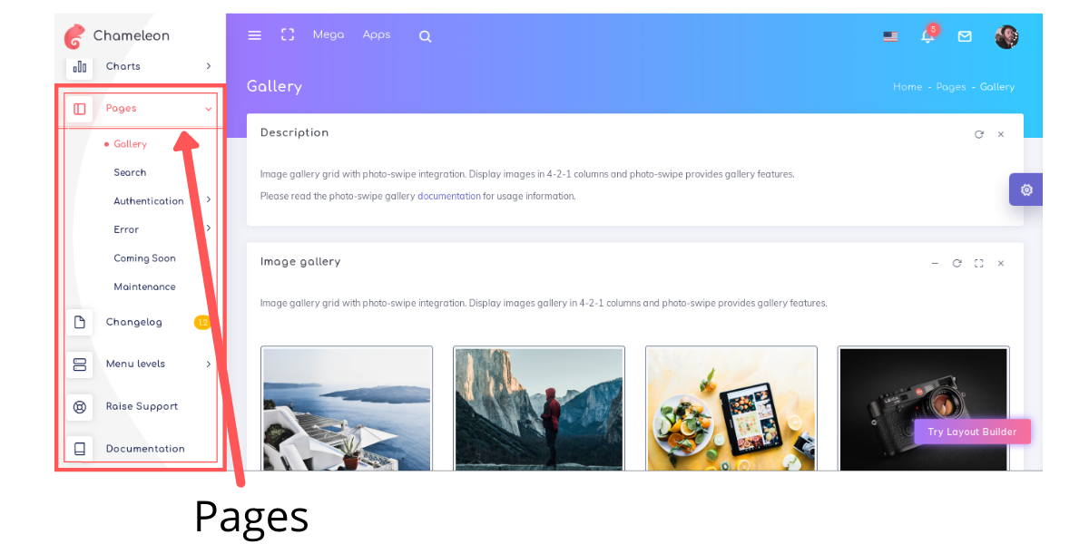 Chameleon admin template pages