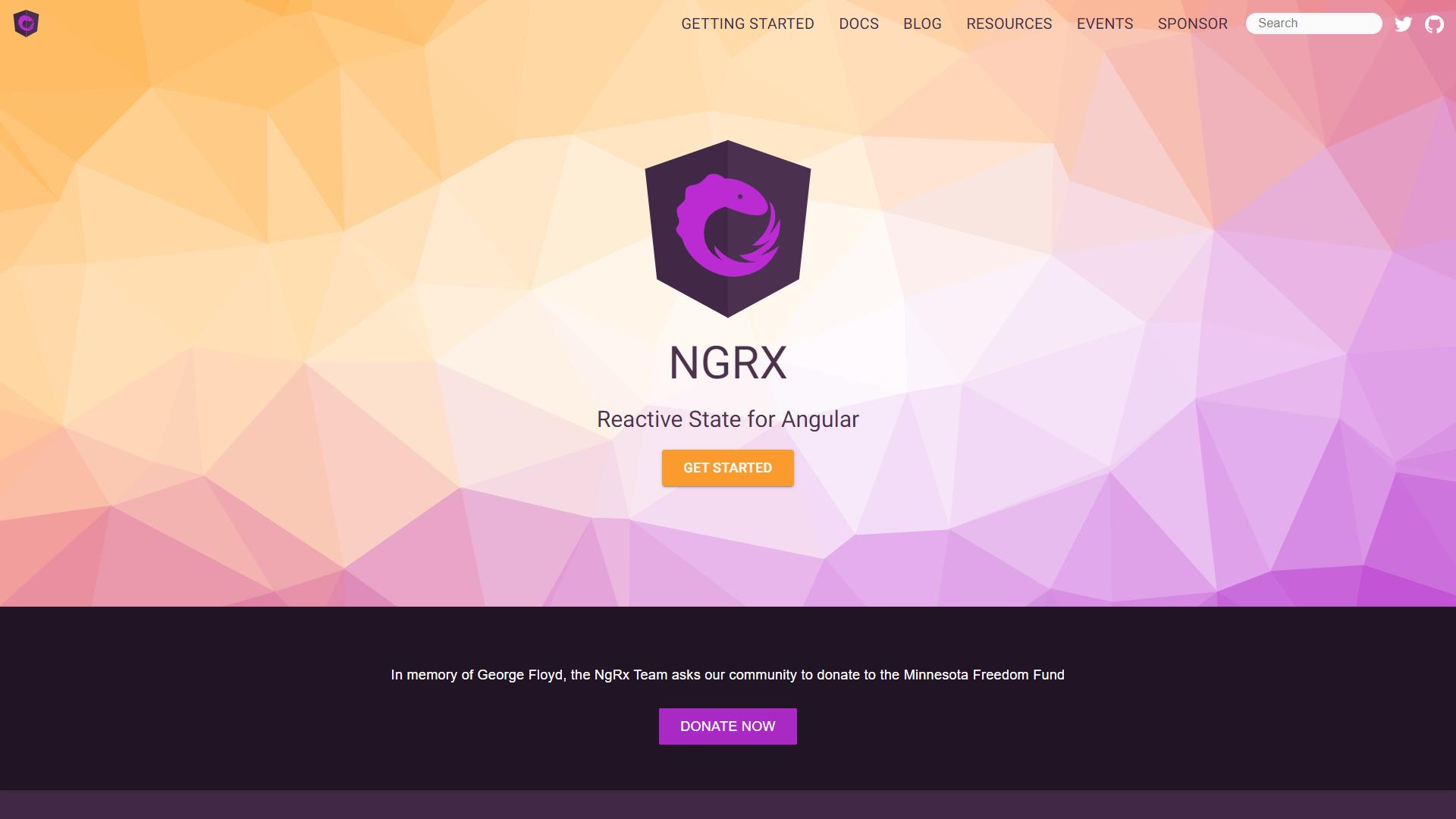 NGRX angular ecosystem