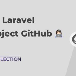 laravel vue project